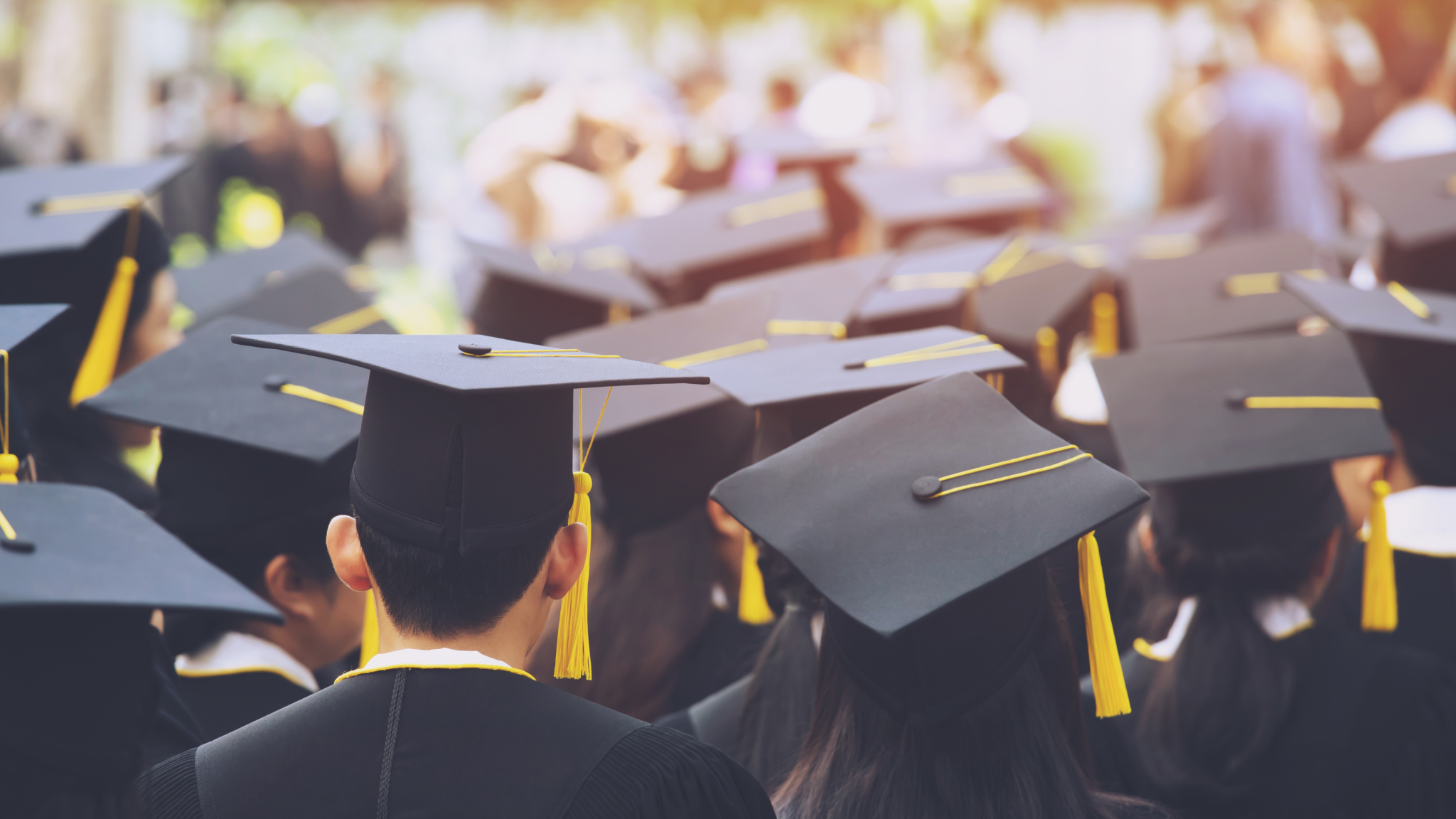 GBS Higher Education Banner Image